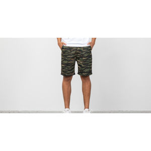 Publish Derick Shorts Camo